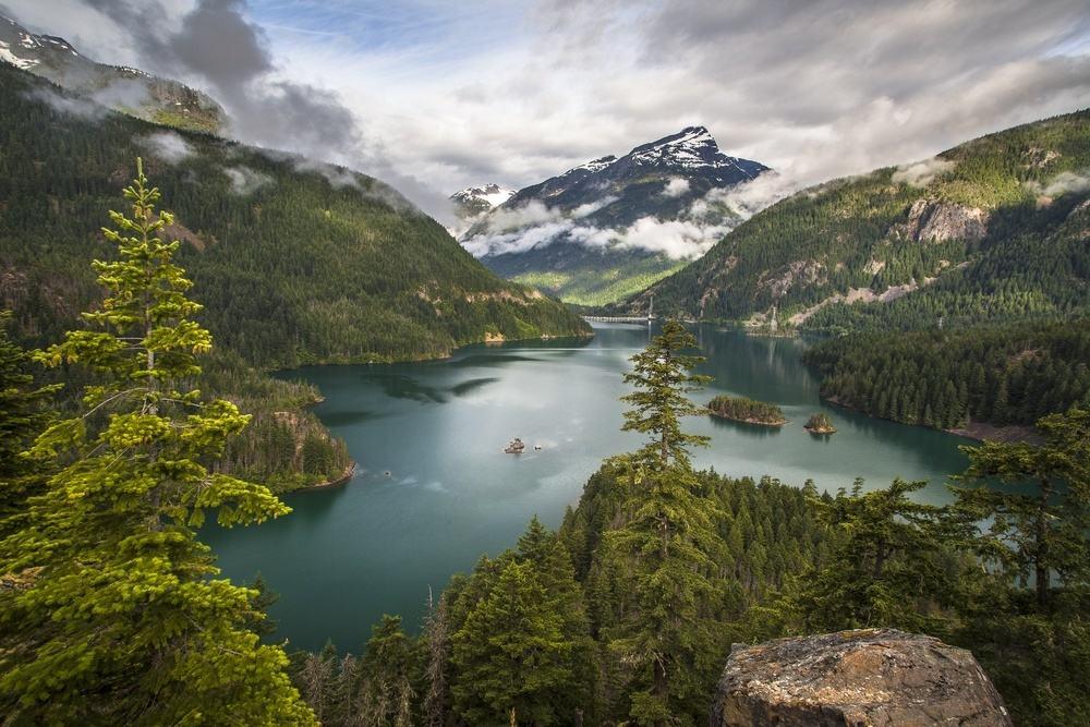 Washington Landscape