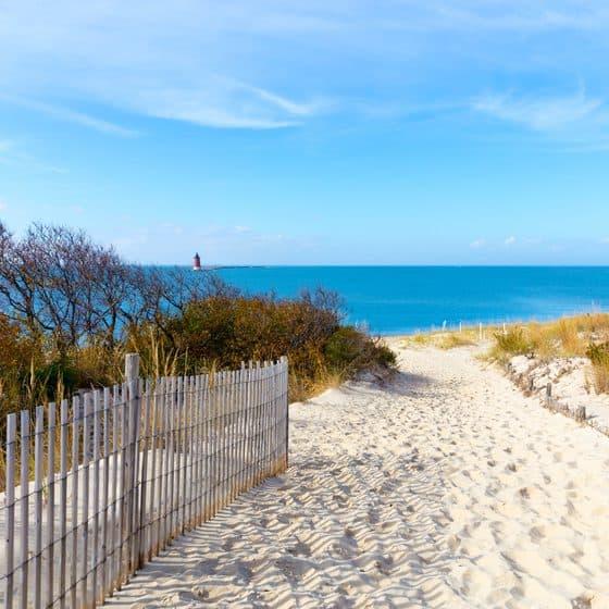 beach walk delaware
